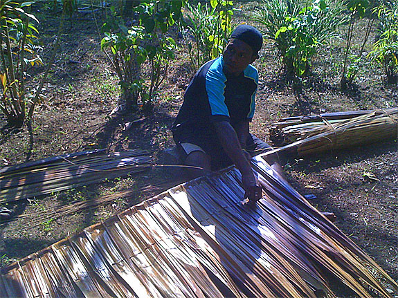 A village man constructed a roof out of sago leaves